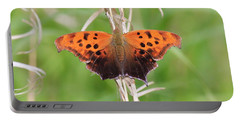 Portable Battery Charger featuring the photograph Eastern Comma Butterfly by Penny Meyers