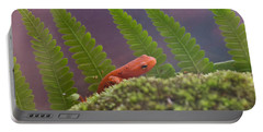 Eastern Newt 3 Portable Battery Charger