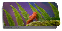 Eastern Newt 7 Portable Battery Charger