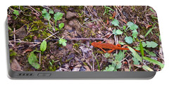 Eastern Newt Juvenile 1 Portable Battery Charger