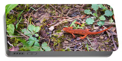 Eastern Newt Juvenile 2 Portable Battery Charger