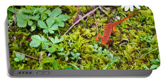 Eastern Newt Juvenile 4 Portable Battery Charger