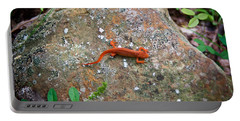 Eastern Newt Juvenile 6 Portable Battery Charger