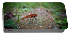 Eastern Newt Juvenile 7 Portable Battery Charger