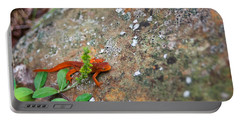 Eastern Newt Juvenile 8 Portable Battery Charger