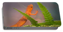 Eastern Newt Notophthalmus Viridescens 1 Portable Battery Charger