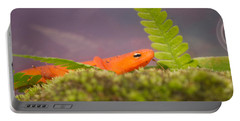 Eastern Newt Notophthalmus Viridescens 3 Portable Battery Charger