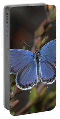 Eastern Tailed Blue Butterfly Portable Battery Charger
