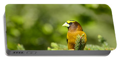 Evening Grosbeak Portable Battery Charger
