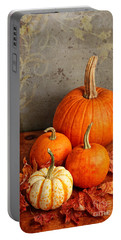 Portable Battery Charger featuring the photograph Fall Pumpkin And Decorative Squash by Verena Matthew