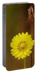 False Dandelion Flower With Wilted Fruit Portable Battery Charger