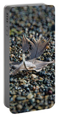 Portable Battery Charger featuring the photograph White Feather by Marilyn Wilson
