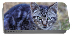 Feral Kitten Portable Battery Charger by Chriss Pagani