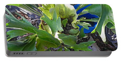Portable Battery Charger featuring the photograph Fern With Blue Bucket by Patricia Greer