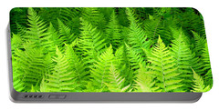 Ferns Galore Filtered Portable Battery Charger