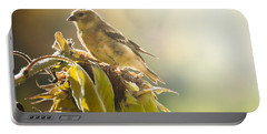 Portable Battery Charger featuring the photograph Finch Aglow by Cheryl Baxter