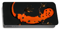 Fire Belly Newt Portable Battery Charger
