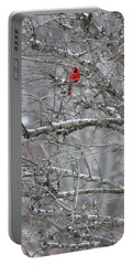First Snow Fall Portable Battery Charger by Kume Bryant