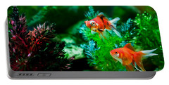 Portable Battery Charger featuring the photograph Fish Tank by Matt Malloy