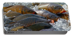 Portable Battery Charger featuring the photograph Fishing And Hunting by Elizabeth Winter