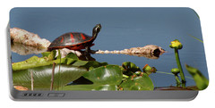 Florida Redbelly Turtle Portable Battery Charger