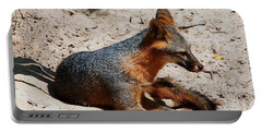 Portable Battery Charger featuring the photograph Foxie by Debra Forand