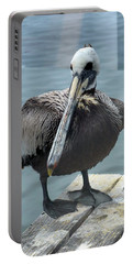 Portable Battery Charger featuring the photograph Friendly Pelican by Carla Parris