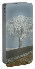 Portable Battery Charger featuring the photograph Frost On The Big Tree  by Penny Meyers