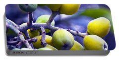 Sicilian Fruits Portable Battery Charger