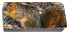 Portable Battery Charger featuring the photograph Fruity Squirel by Elizabeth Winter