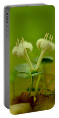 Portable Battery Charger featuring the photograph Fuzzy Blooms by JD Grimes