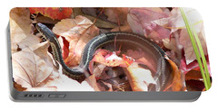 Garter Snake Portable Battery Charger by Kevin Fortier
