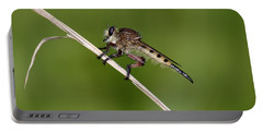 Giant Robber Fly - Promachus Hinei Portable Battery Charger
