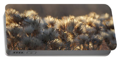 Portable Battery Charger featuring the photograph Gone To Seed by Fran Riley