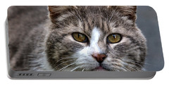 Gray Tabby Tux Cat Portable Battery Charger by Chriss Pagani