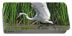 Great Egret   Ardea Alba  Running Start Portable Battery Charger