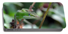 Green Anole Portable Battery Charger by Kay Lovingood