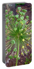 Portable Battery Charger featuring the photograph Green Flower by Stephanie Moore