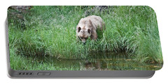 Grizzly Bear And Reflection On Prince Rupert Island Canada 2209 Portable Battery Charger