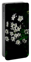 Ground-elder Portable Battery Charger