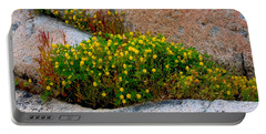 Portable Battery Charger featuring the photograph Growing In The Cracks by Brent L Ander
