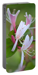 Portable Battery Charger featuring the photograph Honeysuckle by JD Grimes