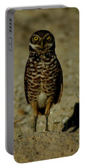 Hoo Are You? Portable Battery Charger