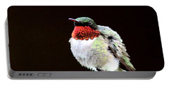 Hummingbird - Ruffled Feathers Portable Battery Charger by Travis Truelove