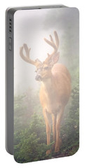 In The Mist Portable Battery Charger