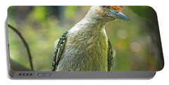 Portable Battery Charger featuring the photograph Inquisitive Woodpecker by Debbie Portwood