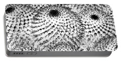 Portable Battery Charger featuring the photograph Invisible Cactus by Rebecca Margraf