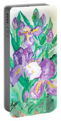 Iris Portable Battery Charger