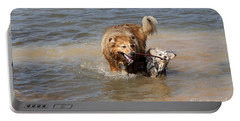 Portable Battery Charger featuring the photograph Jesse And Gremlin Sharing by Jeannette Hunt