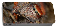 Jumping Spider Portrait Portable Battery Charger